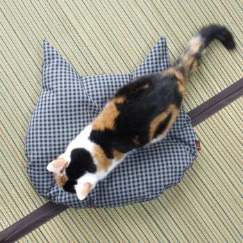 猫のしあわせ座布団:上からの形状