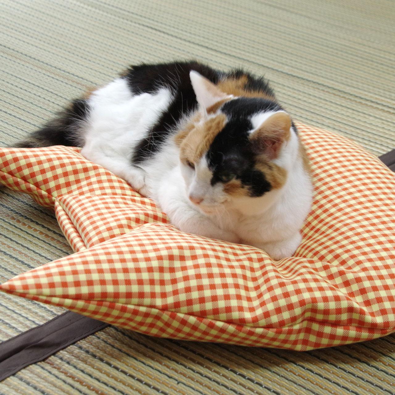 猫のしあわせ座布団:羽毛のネコクッション