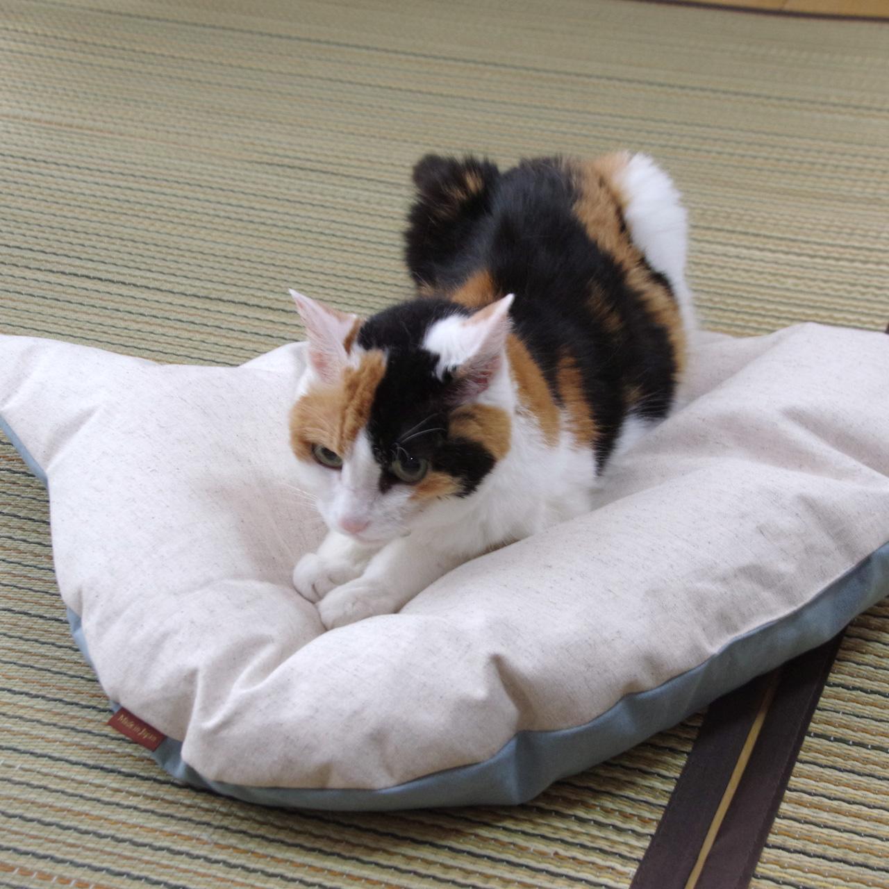 涼感!猫のしあわせ座布団:裏側
