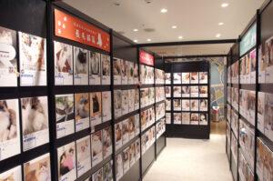 仙台で開催の『ねこにすと40』